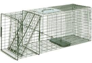 Racoon Cage